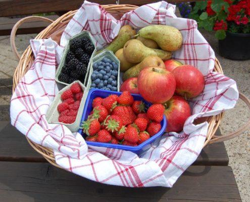 de_fruitschuur